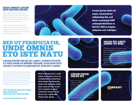 Bacteriology Brochure Template, Outer Page, 03702, Medical — PoweredTemplate.com