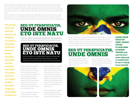 Face Of Brazil Brochure Template Inner Page
