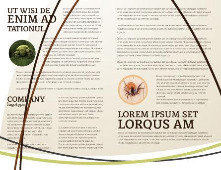 Templat Brosur Tungau, Halaman Dalam, 04636, Medis — PoweredTemplate.com