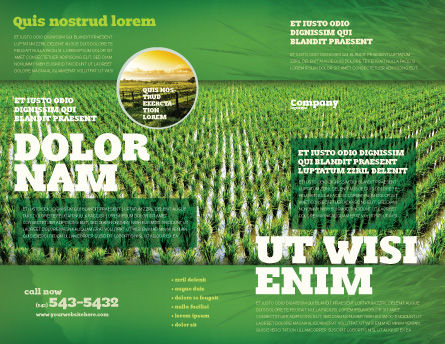 Rice Paddies Brochure Template, Outer Page, 05325, Agriculture and Animals — PoweredTemplate.com