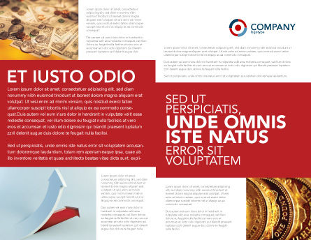 Crisis Overcome Brochure Template Inner Page