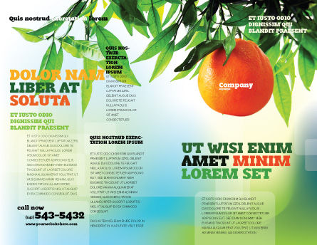 Orange Tree Brochure Template, Outer Page, 05547, Agriculture and Animals — PoweredTemplate.com