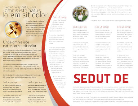 House Debt Brochure Template Inner Page