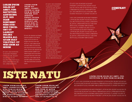 Abstract Red Stars Brochure Template Inner Page