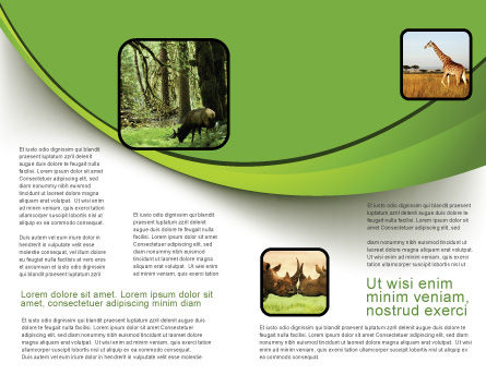Wooden Path Brochure Template Inner Page