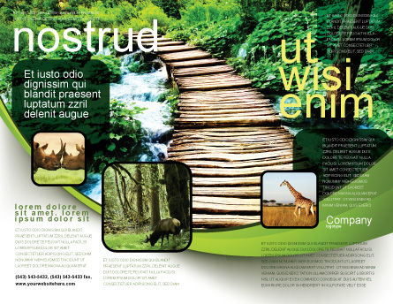 Wooden Path Brochure Template Outer Page