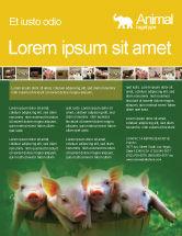 Agriculture and Animals: Modelo de Folheto - porco #01708