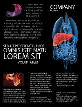 Medical: Liver Flyer Template #03025