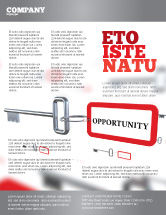 Consulting: Key Opportunity Flyer Template #07495