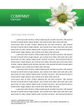 Nature & Environment: Ox-eye Daisy Letterhead Template #02533