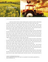 Agriculture and Animals: Summer On The Farm Letterhead Template #04809