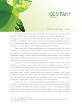 Abstract/Textures: Green Theme Letterhead Template #07047