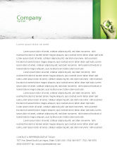 Careers/Industry: Olive Lamp Letterhead Template #07113