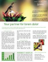 Nature & Environment: Cape Sugarbird Newsletter Template #02052