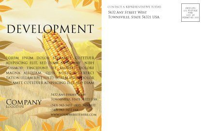 Free Corn Thanksgiving Postcard Template, Inner Page, 02821, Agriculture and Animals — PoweredTemplate.com