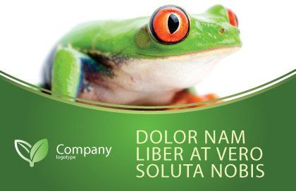 Tropical Green Frog Postcard Template, Outer Page, 03160, Agriculture and Animals — PoweredTemplate.com