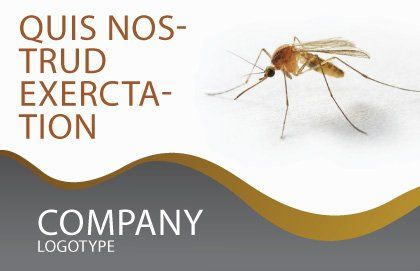 Mosquito Postcard Template, Outer Page, 04599, Agriculture and Animals — PoweredTemplate.com