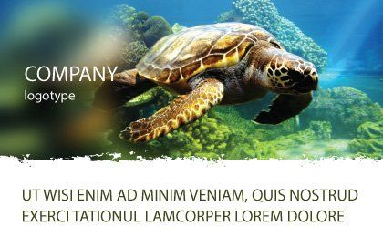 Sea Turtle Postcard Template, Outer Page, 05237, Agriculture and Animals — PoweredTemplate.com