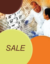 Technology, Science & Computers: Chemical Research Sale Poster Template #01028