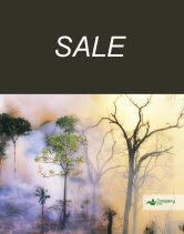 Nature & Environment: Forest Fire Sale Poster Template #01636