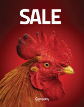 Agriculture and Animals: Rooster Sale Poster Template #04937