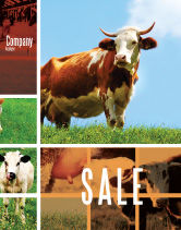 Agriculture and Animals: Cow Sale Poster Template #04991
