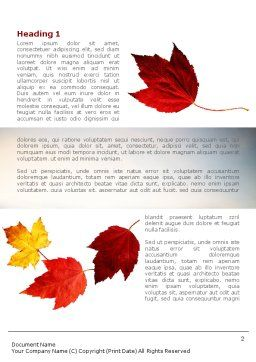 Falling Leaves In The Sunset Word Template First Inner Page