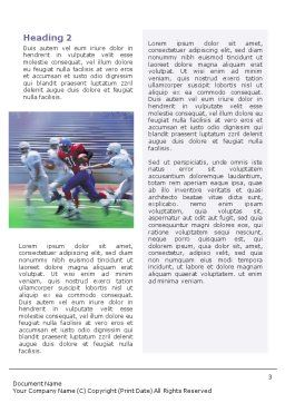 American Football Arizona Cardinals Word Template, Second Inner Page, 01590, Sports — PoweredTemplate.com
