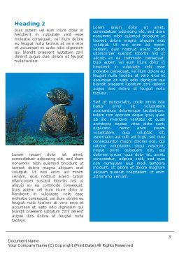 Coral Reef Word Template Second Inner Page