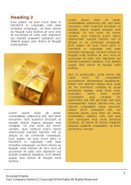 A Gift For Christmas Word Template, Second Inner Page, 01694, Holiday/Special Occasion — PoweredTemplate.com