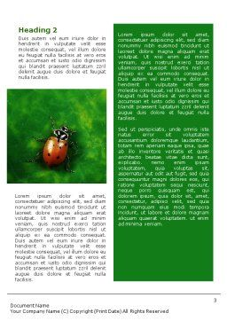 Bug Word Template Second Inner Page