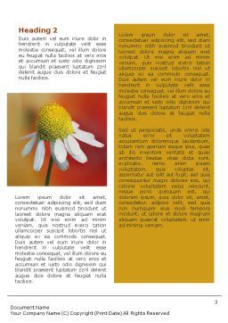Ladybug Word Template, Second Inner Page, 01812, Nature & Environment — PoweredTemplate.com