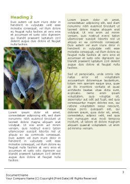 Koala Word Template, Second Inner Page, 01867, Agriculture and Animals — PoweredTemplate.com