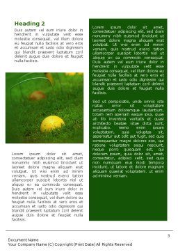 Cricket Word Template, Second Inner Page, 01920, Sports — PoweredTemplate.com