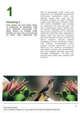 Cape Sugarbird Word Template, First Inner Page, 02052, Nature & Environment — PoweredTemplate.com
