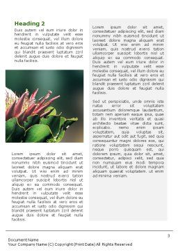 Cape Sugarbird Word Template, Second Inner Page, 02052, Nature & Environment — PoweredTemplate.com