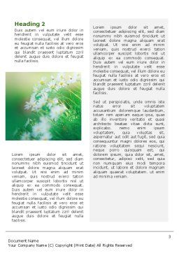 Spring Chamomiles Word Template, Second Inner Page, 02105, Nature & Environment — PoweredTemplate.com