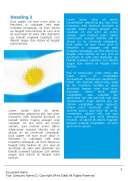 Flag of Argentine Republic Word Template Second Inner Page