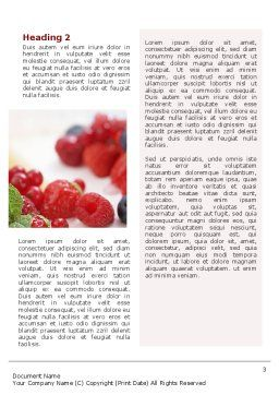 Berry Word Template, Second Inner Page, 02250, Food & Beverage — PoweredTemplate.com