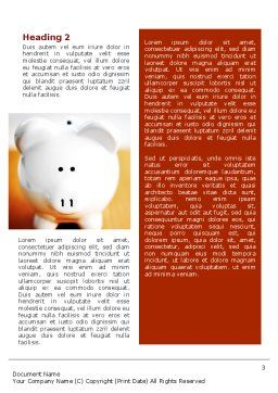 Save Money Word Template, Second Inner Page, 02316, Financial/Accounting — PoweredTemplate.com