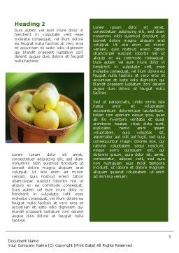 Basket of Apples Word Template, Second Inner Page, 02432, Food & Beverage — PoweredTemplate.com