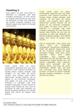 Statues of Buddha Word Template Second Inner Page