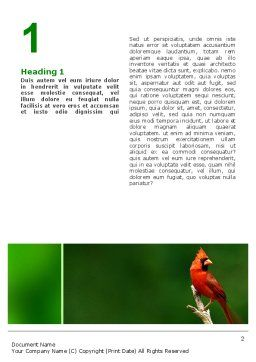 Cardinal Indiana State Bird Word Template, First Inner Page, 02503, Agriculture and Animals — PoweredTemplate.com