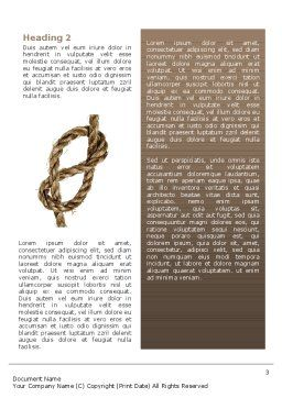 Rope Word Template, Second Inner Page, 02532, Business Concepts — PoweredTemplate.com