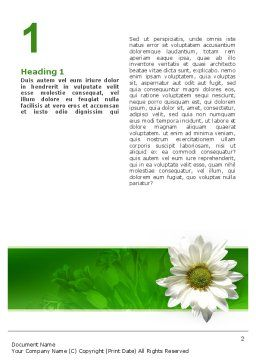 Ox-eye Daisy Word Template First Inner Page