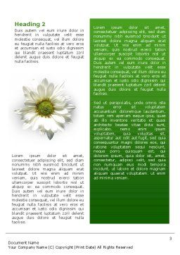 Ox-eye Daisy Word Template, Second Inner Page, 02533, Nature & Environment — PoweredTemplate.com
