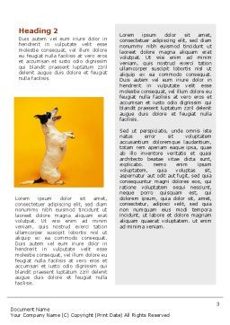 Pet Word Template, Second Inner Page, 02559, Business Concepts — PoweredTemplate.com