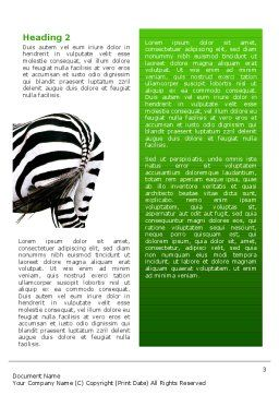 Zebra Word Template, Second Inner Page, 02564, Abstract/Textures — PoweredTemplate.com