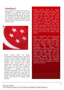 Flag of Singapore Word Template Second Inner Page