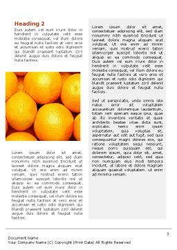 Oranges Word Template, Second Inner Page, 02688, Food & Beverage — PoweredTemplate.com